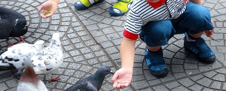 Когда бывают рвота и понос у ребенка